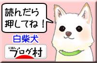にほんブログ村「白柴犬」カテゴリー投票