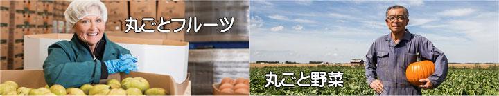 新鮮な丸ごとフルーツ、丸ごと野菜の生産者