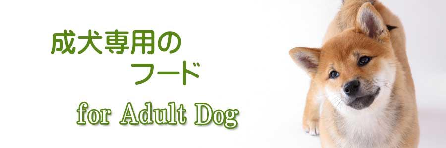 成犬用プレミアムフード