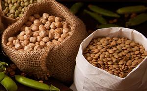 良質な豆類を使用