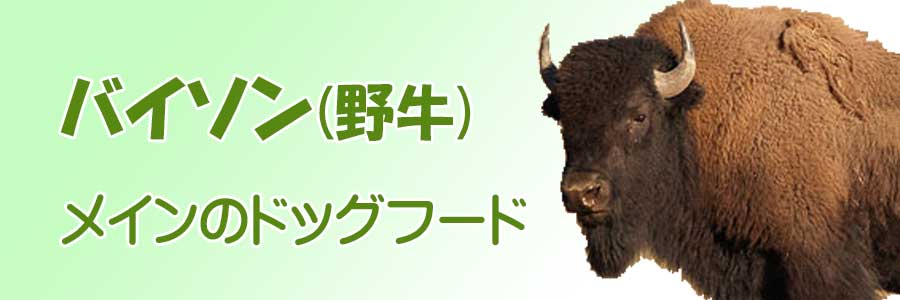 バイソン(野牛)肉メインのドッグフード
