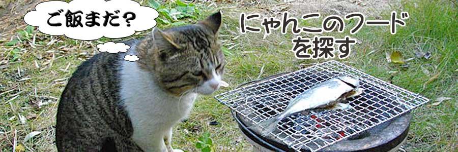 愛猫のフード(総合栄養食)を探す。