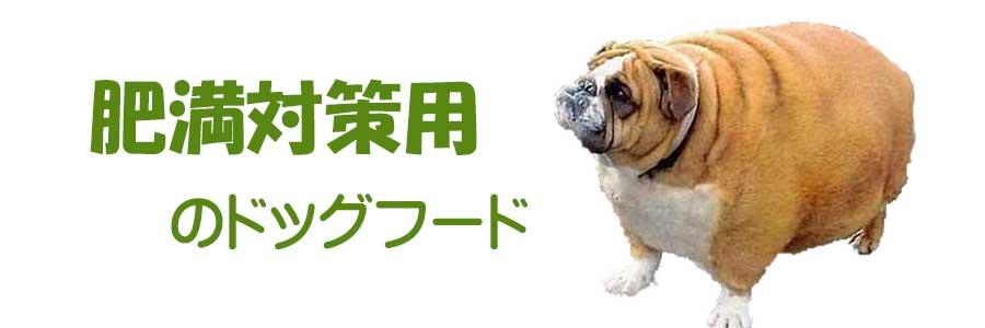 肥満対策用ドッグフード