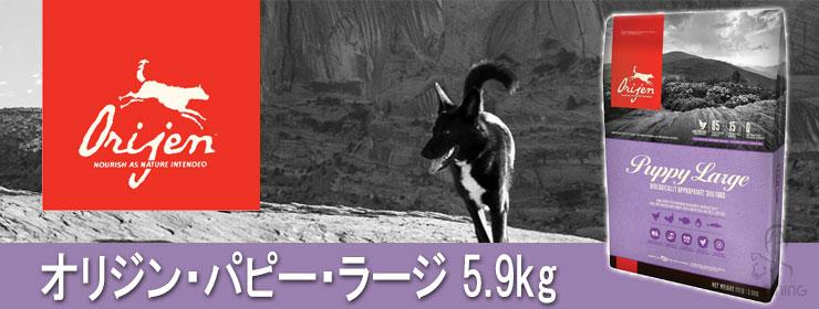 オリジン パピーラージ 5.9kg