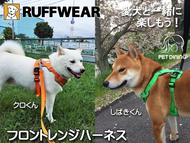 愛犬と一緒に楽しもう! フロントレンジハーネス(クロくん・しばきくん)