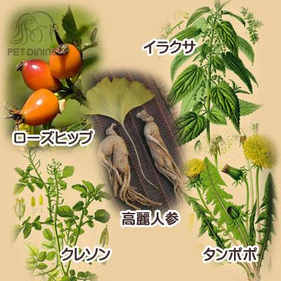 野菜・果物・ハーブや薬草などを配合
