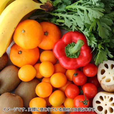 ビタミン・ミネラル・食物繊維